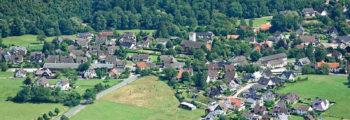 2013: Dorfbefragung